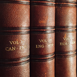 Close-up view of three spines of brown leather bound books from encyclopedic texts